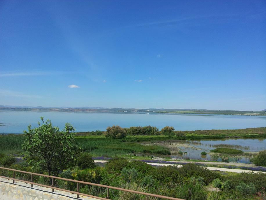 Laguna de fuente de piedra for Lagunas artificiales construccion